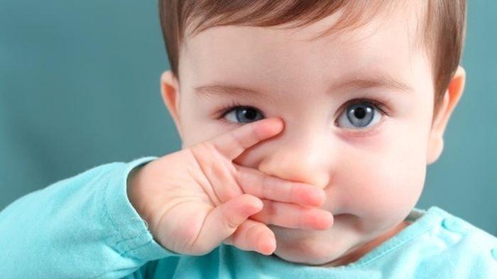 Moms! Ini Nutrisi Penting untuk Bayi Berusia 6 Bulan Ke Atas