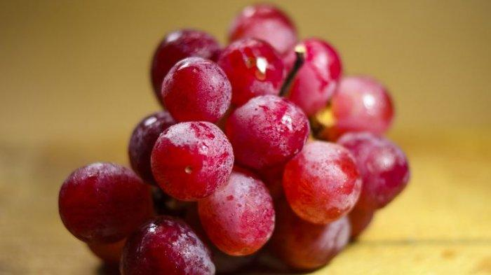 Ilustrasi buah anggur.