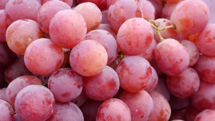 TERNYATA Anggur Adalah Buah Surga Disebutkan dalam Alquran,Bisa Turunkan Kolesterol hingga Diabetes