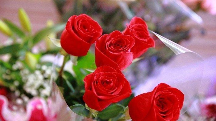 Arti Mimpi Bunga, Bisa Jadi Pertanda Kedamaian hingga Kekecewaan, Ini Tafsiran Lengkapnya