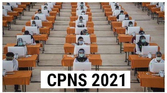 Kementerian Luar Negeri Buka 332 Formasi CPNS 2021, Lihat Daftar Lengkap di Link Resmi Ini