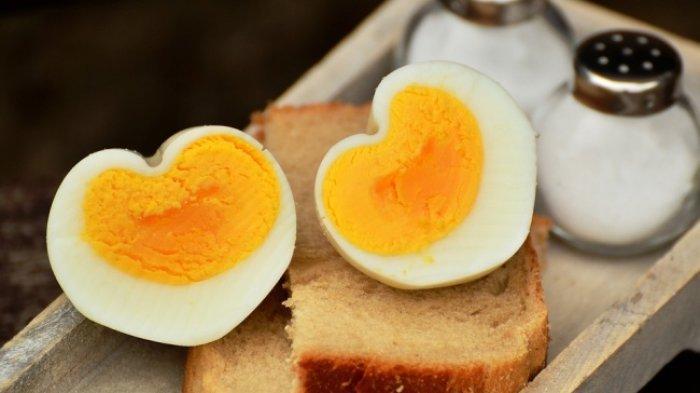 ilustrasi masakan telur rebus (brightside.me)