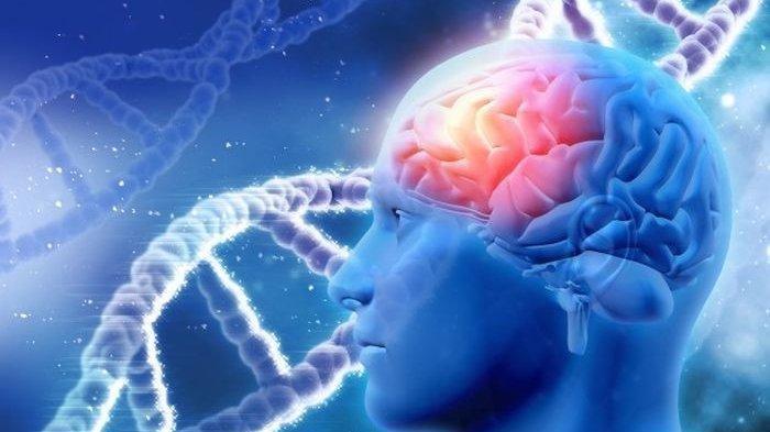 ilustrasi: Pengertian hingga Penyebab penyakit Ensefalitis atau encephalitis. Apa itu?