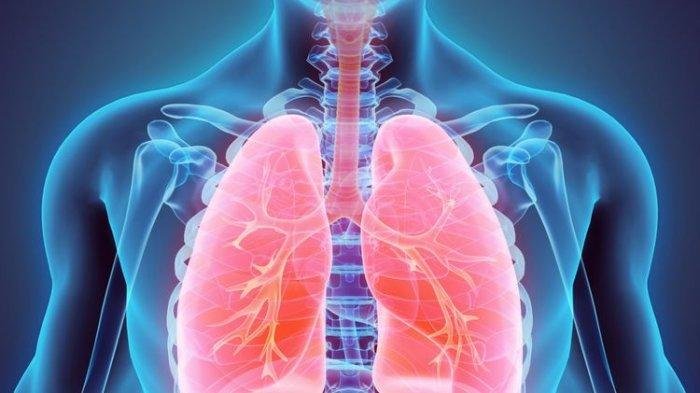 Tak Banyak yang Tahu, Perbedaan Sesak Akibat Asam Lambung dan Gangguan Paru-paru