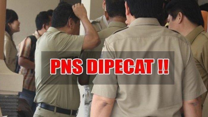 Daftar 17 Kewajiban PNS Berdasarkan PP Terbaru Diumumkan Jokowi, Melanggar Bisa Dipecat