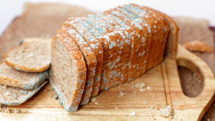 PENTING - Sarapan Roti Setiap Hari Berisiko Kanker Payudara? Ini Penjelasan Ahli