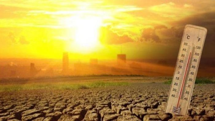 Apa Itu Iklim Tropis? Sebagian Besar Daerah yang Hangat & Lembap, Ini Pengertian dan Ciri-cirinya