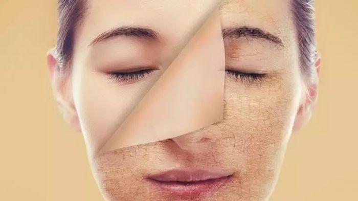 Tak Perlu Operasi Plastik, 7 Kebiasaan ini Bisa Membuat Kulit Wajahmu Awet Muda