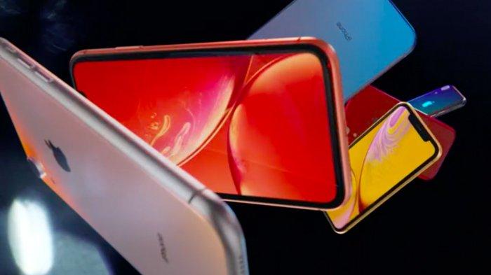 TERBARU, Daftar Harga HP iPhone Awal Bulan Juni 2021, iPhone 12 Series hingga iPhone Xr