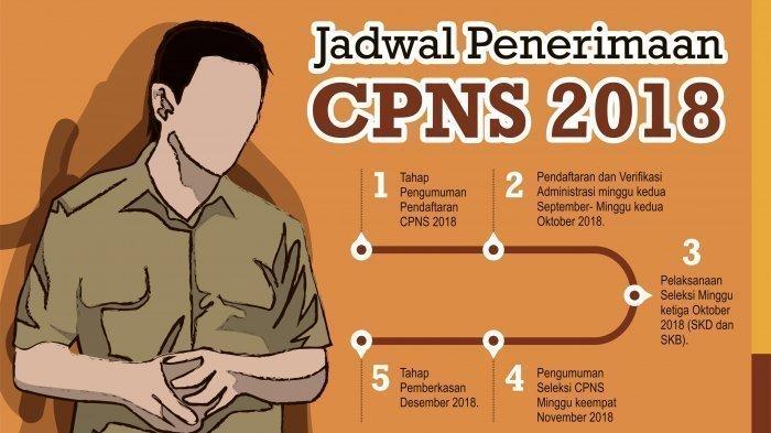 Siap-siap, Pukul 13.00 Situs Penerimaan CPNS Bisa Diakses