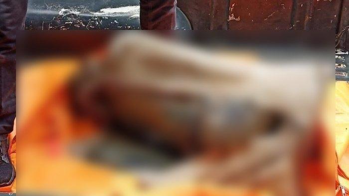 Jasad anak perempuan terbungkus karung plastik ditemukan di perkebunan warga di Dusun II, Desa Bawaziono, Kecamatan Lahusa, Kabupaten Nias Selatan, Sumatera Utara (Sumut). Foto ilustrasi: penemuan mayat dalam karung. (Istimewa/Facebook)