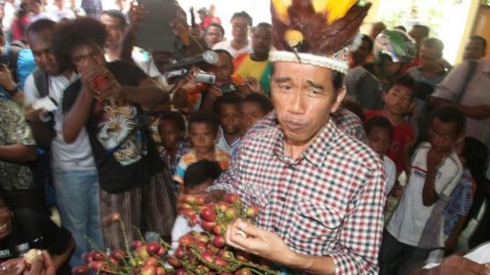 Joko Widodo (Jokowi) mencoba buah asli Papua, Matoa saat berkunjung di Desa Yoka, Distrik Heram, Jayapura, Kamis (5/6/2014).