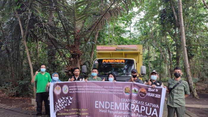Karantina Pertanian  Manado dan BKSDA Sulut mengembalikan ratusan satwa endemik Papua ke habitat asalnya.