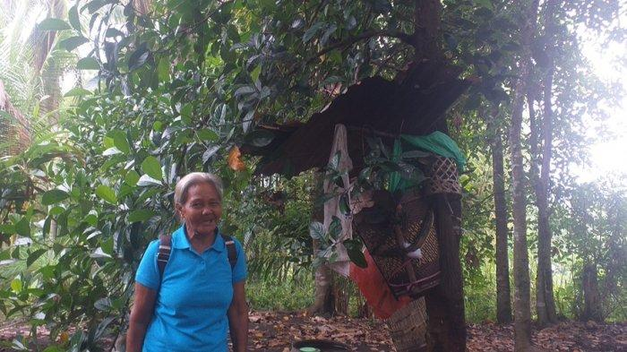 Kisah Oma Katrina, Lansia 71 Tahun yang Tinggal di Gubuk Kecilnya di Kombos Timur