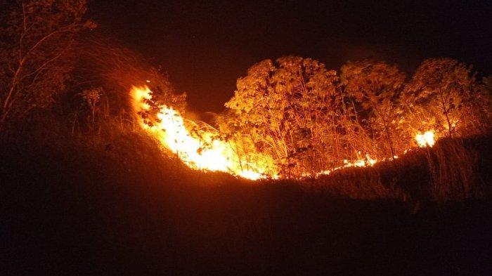 Inilah Data Peristiwa Kebakaran di Manado Juli- Agustus, Supriyetno Imbau Warga Waspada