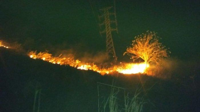 Kebakaran Lahan di Desa Tandu,Sangadi Duga Ada Orang Buang Puntung Rokok