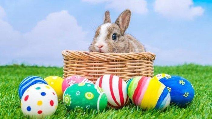 Kenapa Kelinci dan TelurDikaitkan denganPaskah?Ini Asal Usul Dua Benda Tersebut Jadi Tradisi