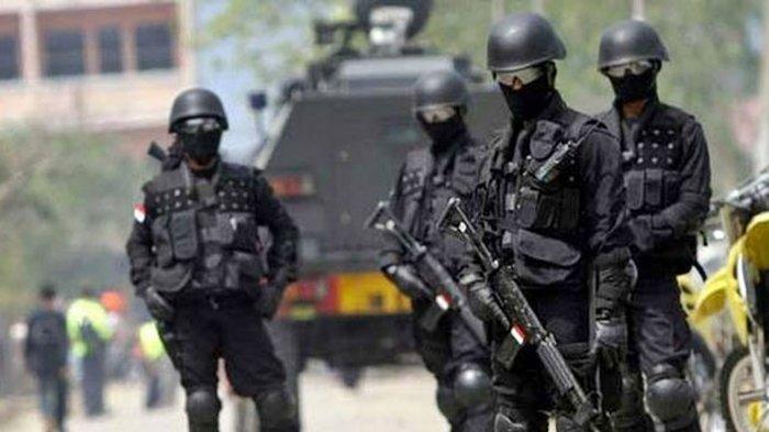 Kepala Densus 88 Minta Setop Sebut KKB dengan Kata Teroris, Irjen Martinus Hukom: Ini Fatal