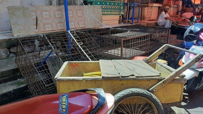 Daging Kucing Masih Dijual Bebas di Tomohon, Enos Pontororing Akan Kami Tertibkan