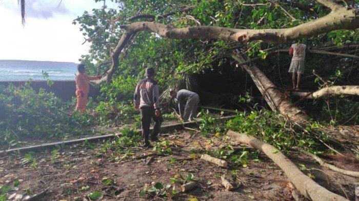 Anggota Polres Talaud melakukan kerja bakti membersihkan sisa amukan Badai Sikon Tropis Surigae.