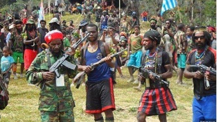 Terungkap! KKB Papua Diduga Dapat Rp 600 Juta dari Pemerintah Puncak Jaya untuk Beli Senjata