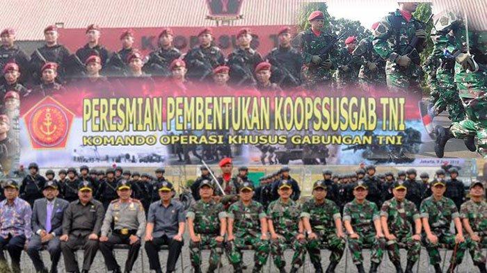 TNI Punya Pasukan Khusus Baru, Tingkat Keberhasilan Mendekati 100 Persen, Bisa Bertugas Dimana Saja