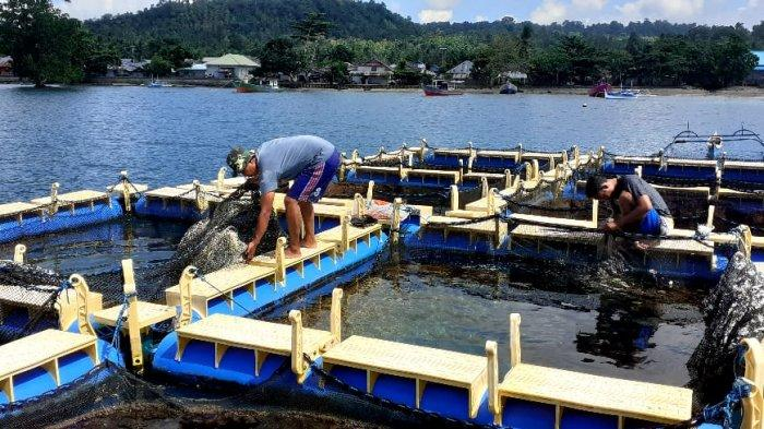 Lanal Melonguane Rintis Pembinaan Kampung Bahari Nusantara di Wilayah Paling Utara Perbatasan NKRI