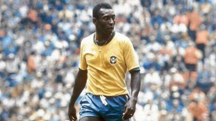 Legenda Brasil Pele