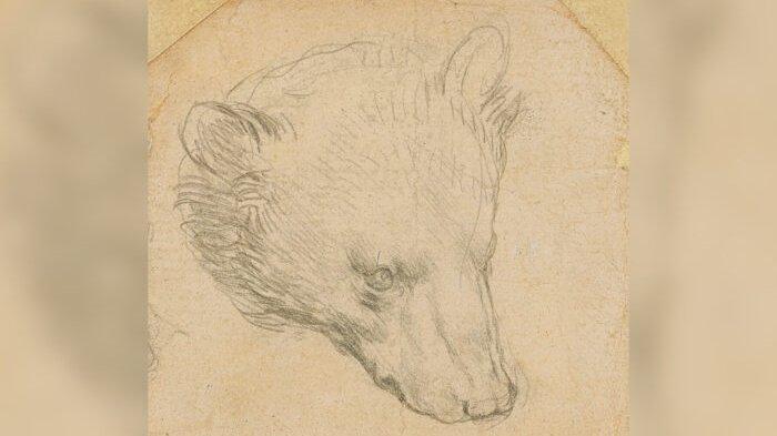 Gambar Kepala Beruang Da Vinci Ditaksir Bernilai Rp 236 Miliar