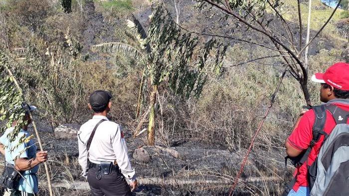 TNI Polri Patroli Bersama Cegah Kebakaran Hutan di Minut