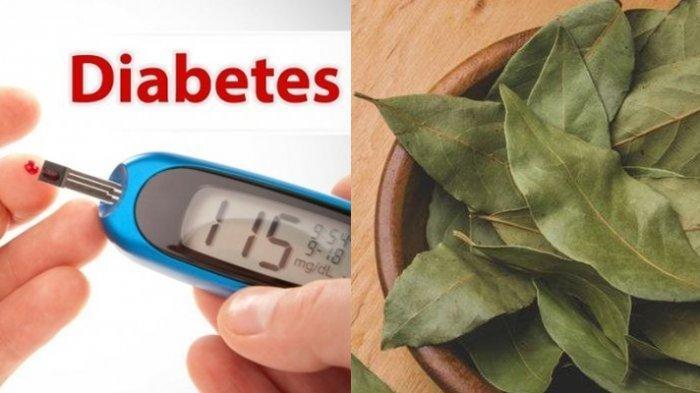 10 Manfaat Rebusan Air Daun Salam Obati Diabetes Turunkan Kolesterol Asam Urat Minum Rutin Halaman All Tribun Manado
