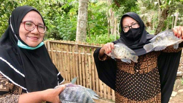 Distankan Kotamobagu Targetkan 801 Ton Produksi Ikan Nila di Tahun 2021