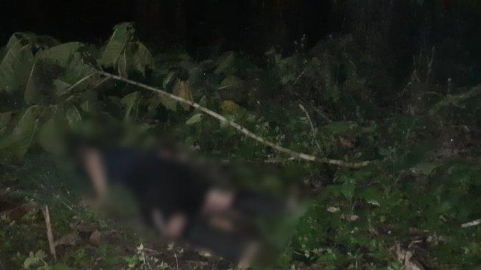 Pria Tomohon Ditemukan tak Bernyawa di Perkebunan