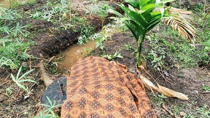 Sering Ejek Rudi Jualan Dibilang Busuk, Ibu Rumah Tangga Ditemukan Tewas Tanpa Busana di Kebun