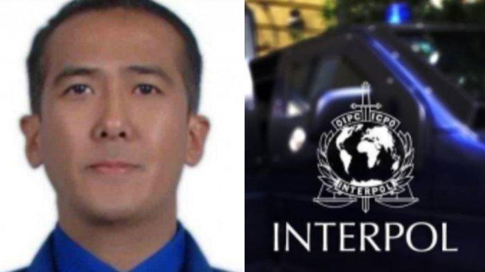 Ini Daftar Nama DPO Asal Indonesia yang Dicari Interpol, Nama Buronan Harun Masiku Tidak Masuk