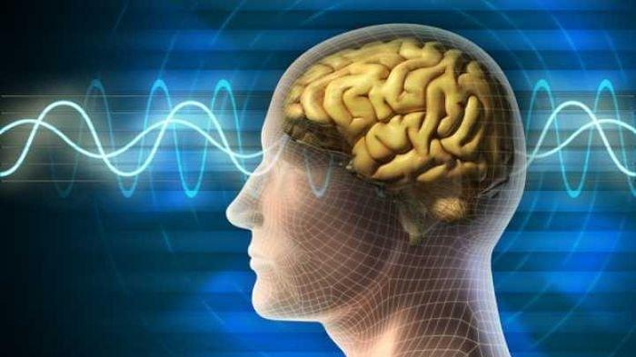 Tak Banyak yang Tahu, Sederet Minuman Ini Berguna untuk Tingkatkan Kemampuan Otak