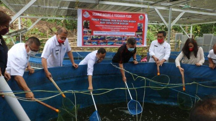 Pemkot Tomohon Ikuti Panen Perdana Ikan Nila Wadah Budidaya Sistem Bioflok Pokdakan Pisok