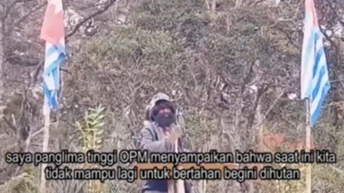 Panglima Kodab OPM/KKB Thitus Murib dan Pasukannya Kembali ke NKRI, Mengaku Telah Dimanfaatkan