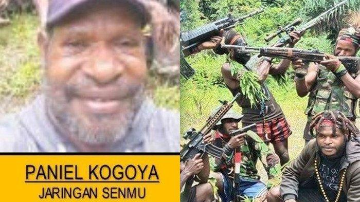 Paniel Kogoya, Pencari Senjata untuk Diberi ke KKB Papua, Tak Berkutik Ditangkap Satgas Nemangkawi