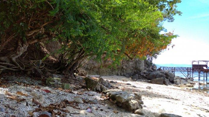 Turis Agentina Tertarik dengan Wisata Bawah Laut Boltim