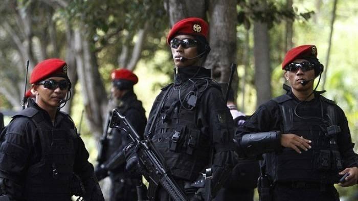 Pasukan Satgultor 81 atau Sat 81 bentukan Prabowo Subianto dan Luhut Pandjaitan. Pemburu Teroris Kelas Kakap.