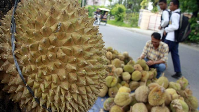 Bahaya Makan Durian Dicampur Dengan Makanan Ini, Ada yang Meninggal