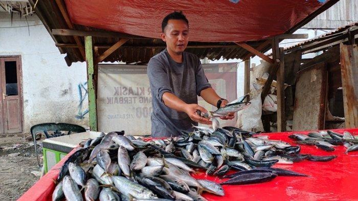 Cuaca Ekstrem, Harga Ikan Laut Naik, Pedagang Terpaksa Kurangi Jumlah Ikan per Paket