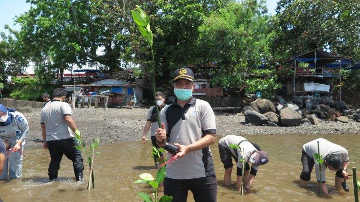 Peduli Lingkungan, Jasa Raharja Sulut Tanam 500 Bibit Mangrove di Pesisir Malalayang Manado