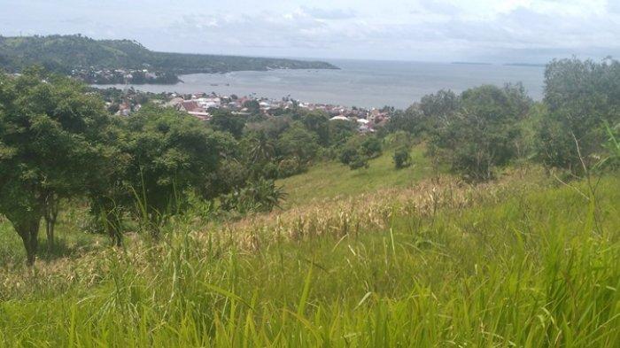 Kawasan Wisata Bukit Sasayaban di Minahasa Selatan bak Lokasi Uji Nyali