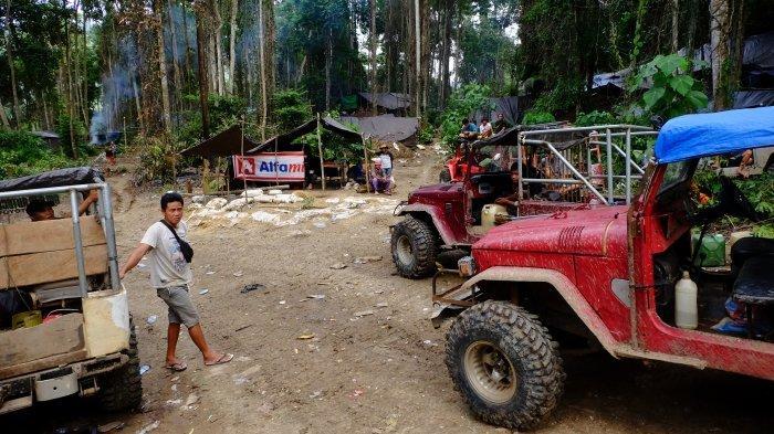 Kebun Raya Hadapi Ancaman Tambang Rakyat, Nyawa Tak Lagi Nomor Satu Demi Sesuap Nasi