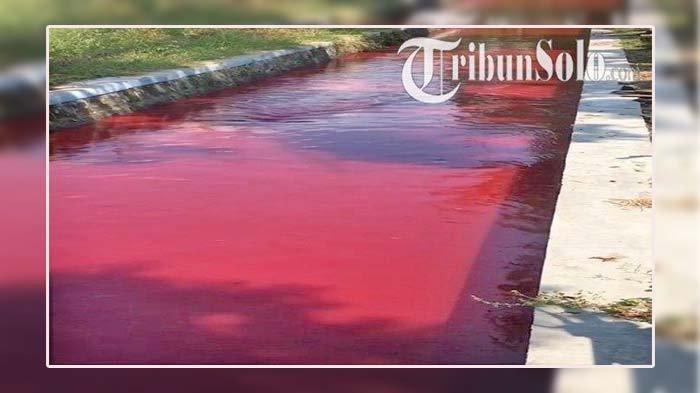 Pertama Kali Terjadi, Air Sungai Tiba-tiba Berwarna Merah, Kejadian di Siang Hari Pukul 13.00 WIB