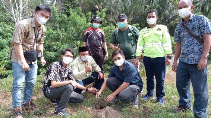 PLN UP3 Kotamobagu Sukses Lakukan Penanaman Seribu Pohon