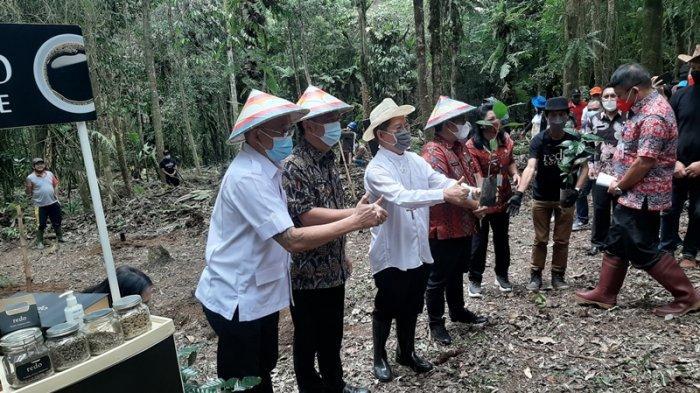 Tomohon Jadi Daerah Pengembangan Kopi Arabika Mahawu, Caroll Wenny Awali Penanaman 12 Ribu Bibit