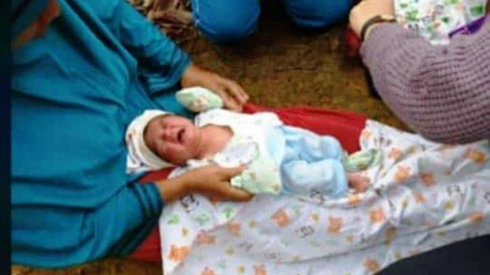 Ingat Bayi Dibuang di Semak Dusun Rumpis? Kini Sudah Diadopsi, Orang Tua Kandung Sepakat Nikah
